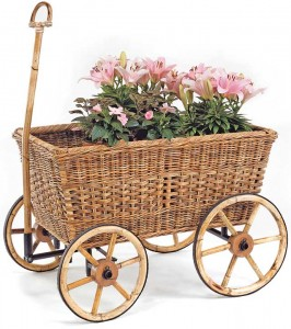 Farmers Basket Cart w/Plant